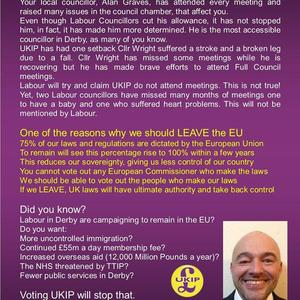 UKIP council election leaflet rear side